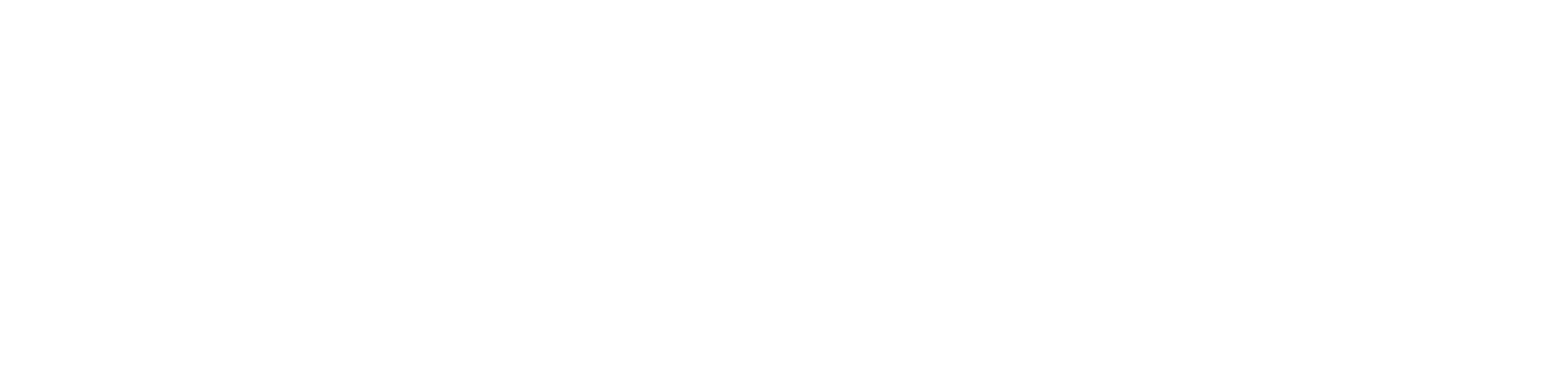Focal Point White Logo.png
