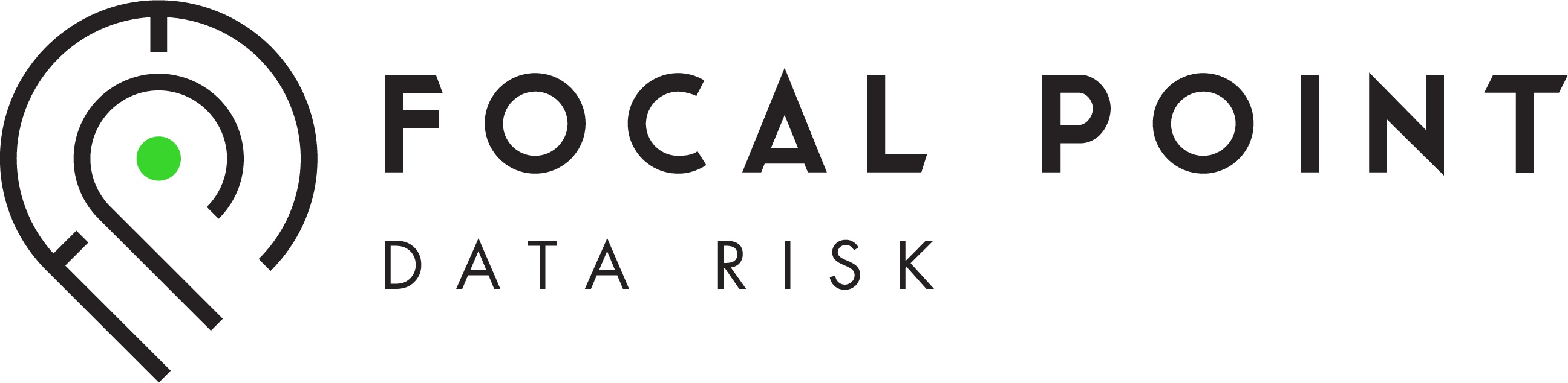 Focal Point Data Risk Logo